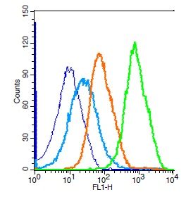 Mouse splenocytes probed with Rabbit Anti-JAK2 Polyclonal Antibody, Unconjugated (bs-0908R) (green) at 1:100 for 30 minutes followed by a FITC conjugated secondary antibody compared to unstained cells (blue), secondary only(light blue), and isotype control(orange).