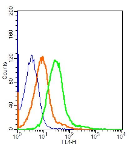 CD64/IGFR1 Polyclonal Antibody, ALEXA FLUOR® 647 Conjugated