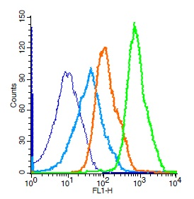 Mouse splenocytes probed with Rabbit Anti-ERK1 Polyclonal Antibody, Unconjugated (bs-1020R) (green) at 1:50 for 30 minutes followed by a FITC conjugated secondary antibody compared to unstained cells (blue), secondary only(light blue), and isotype control(orange).