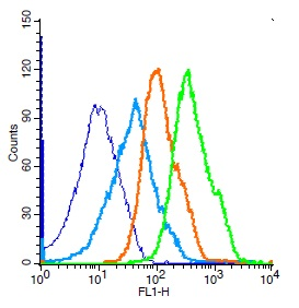 Mouse splenocytes probed with Rabbit Anti-SIRT5 Polyclonal Antibody, Unconjugated (bs-9456R) (green) at 1:50 for 30 minutes followed by a FITC conjugated secondary antibody compared to unstained cells (blue), secondary only(light blue), and isotype control(orange).
