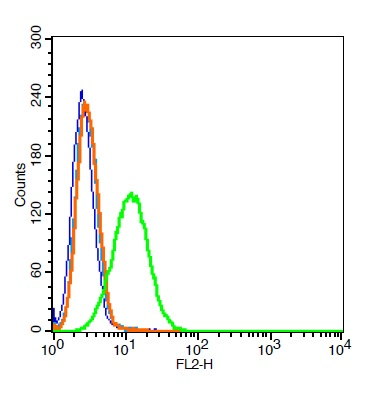 A549 cells probed with \\tVEGFR3 Polyclonal Antibody, Unconjugated (bs-2202R)  at 1:100 for 30 minutes followed by incubation with a conjugated secondary (PE conjugated)  (green) for 30 minutes compared to control cells (blue), secondary only (light blue) and isotype control (orange).