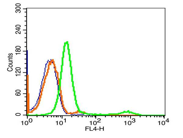 Human Hela cells probed with CD10 Polyclonal Antibody, Alexa Fluor 647 conjugated (bs-0527R-A647) (green) at 1:20 for 30 minutes compared to unstained cells (blue) and isotype control (orange).