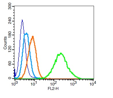 293T cells probed with PARK7 Polyclonal Antibody, Unconjugated (bs-1306R)  at 1:100 for 30 minutes followed by incubation with a conjugated secondary (PE Conjugated)  (green) for 30 minutes compared to control cells (blue), secondary only (light blue) and isotype control (orange).