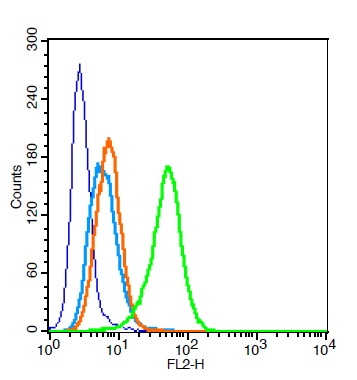 Human U937 cells probed with CD32 Polyclonal Antibody, Unconjugated (bs-2573R)  at 0.2ug for 30 minutes followed by incubation with a PE Conjugated secondary (green) for 30 minutes compared to control cells (blue), secondary only (light blue) and isotype control (orange).
