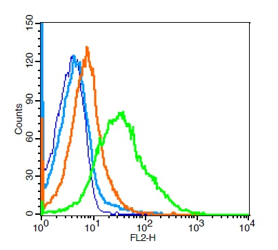 Mouse splenocytes probed with CD33 Polyclonal Antibody, Unconjugated (bs-1514R)  at 1:100 for 30 minutes followed by incubation with a PE Conjugated secondary (green) for 30 minutes compared to control cells (blue), secondary only (light blue) and isotype control (orange).