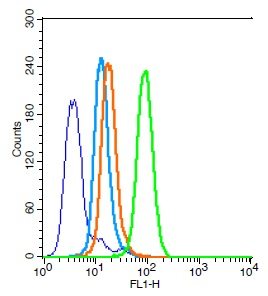Human HL-60 cells probed with Bax Polyclonal Antibody, Unconjugated (bs-0127R) (green) at 1:30 for 30 minutes followed by a FITC conjugated secondary antibody compared to unstained cells (blue), secondary only (light blue), and isotype control (orange).
