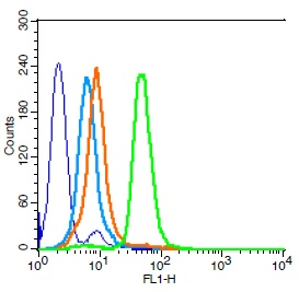 Human HL-60 cells probed with CD15 Polyclonal Antibody, Unconjugated (bs-1702R) (green) at 1:100 for 30 minutes followed by a FITC conjugated secondary antibody compared to unstained cells (blue), secondary only (light blue), and isotype control (orange).