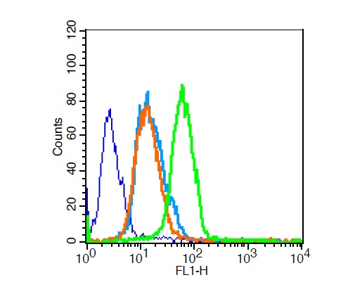 U251 cells probed with Survivin Polyclonal Antibody, Unconjugated (bs-0615R) for 30 minutes followed by incubation with a conjugated secondary (FITC Conjugated)  (green) for 30 minutes compared to control cells (blue), secondary only (light blue) and isotype control (orange).