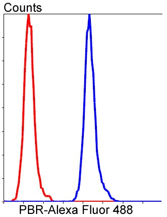 Flow cytometric analysis of HeLa cells with PBR (1D4) Monoclonal Antibody (bsm-52249R) at a 1:50 dilution (red) compared with an unlabeled control (cells without incubation with primary antibody; blue).