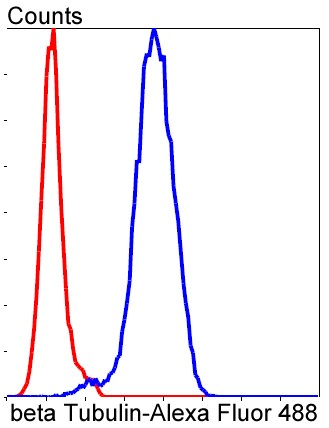 Flow cytometric analysis of NIH/3T3 cells with beta Tubulin (2F11) Monoclonal Antibody (bsm-52290R) at 1/50 dilution (blue) compared with an unlabelled control (cells without incubation with primary antibody; red). Alexa Fluor 488-conjugated goat anti rabbit IgG was used as the secondary antibody.