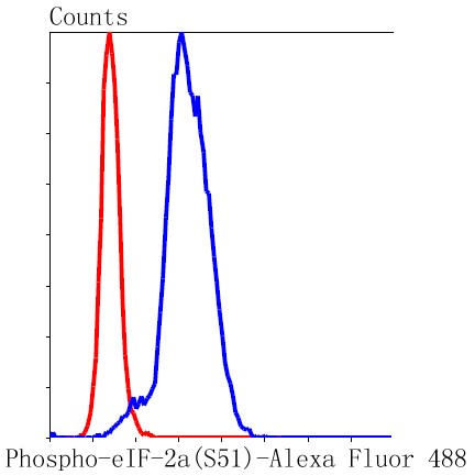 Flow cytometric analysis of HeLa cells with eIF-2a (Ser51) (8B5) Monoclonal Antibody (bsm-52306R) at 1:50 dilution (red) compared with an unlabeled control (cells without incubation with primary antibody; black).
