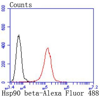 Flow cytometric analysis of Jurkat cells probed with Hsp90 beta (1A1) Monoclonal Antibody (bsm-52352R) at 1:50 dilution (red) compared with an unlabeled control (cells without incubation with primary antibody; black).