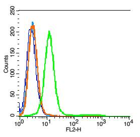 RSC96 cells(black) were incubated in 5% BSA blocking buffer for 30 min at room temperature. Cells were then stained with \r\nIL-1R2 Antibody\uff08bs-2595R\uff09 at 1:50 dilution in blocking buffer and incubated for 30 min at room temperature, washed twice with 2% BSA  in PBS. Acquisitions of 20,000 events were performed.  Cells stained with primary antibody (green) and isotype control (orange).