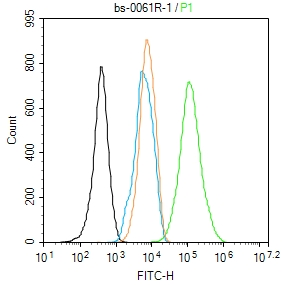 NIH\/3T3 cells were fixed with 4% PFA for 10min at room temperature,permeabilized with 90% ice-cold methanol for 20 min at -20\u2103, and incubated in 5% BSA blocking buffer for 30 min at room temperature. Cells were then stained with beta Actin Polyclonal Antibody(bs-0061R)at 1:100 dilution in blocking buffer and incubated for 30 min at room temperature, washed twice with 2%BSA in PBS, followed by secondary antibody incubation for 40 min at room temperature. Acquisitions of 20,000 events were performed. Cells stained with primary antibody (green), and isotype control (orange).